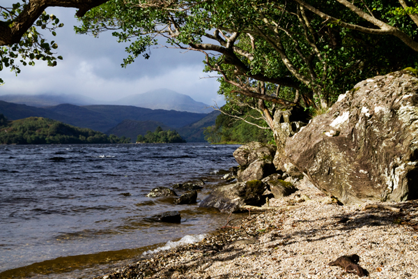West Highland Way Schottland Loch Lomond